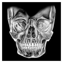Koszulka motocyklowa Big Skull