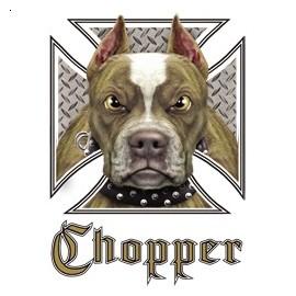 Koszulka motocyklowa Chopper Pit Bull